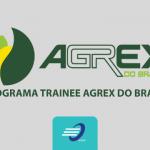 Programa Trainee